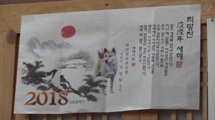 Корейцам запретили есть собак на время Олимпиады