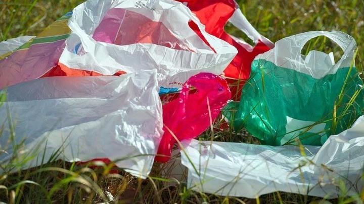 Свалка пластиковых пакетов