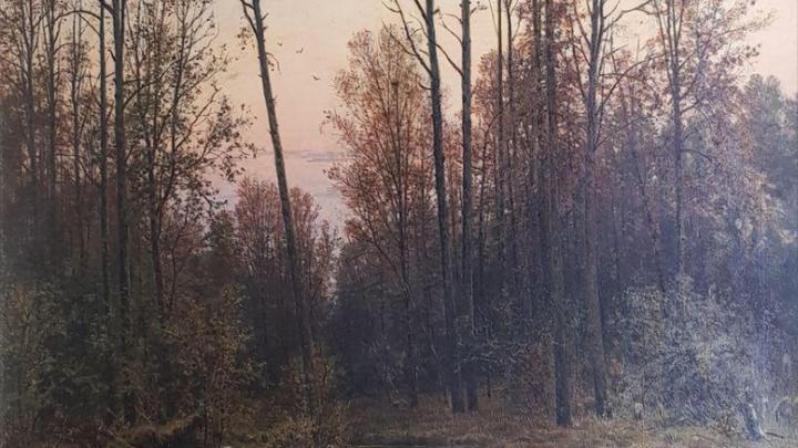 ВПодмосковье картина Шишкина 94 года провисела под чужим названием