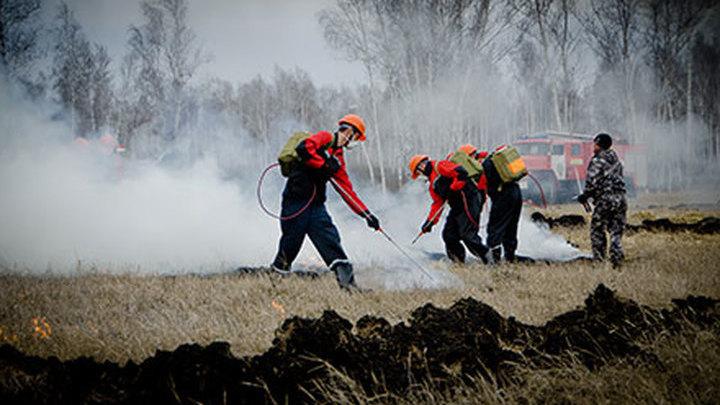 Лесопожарные службы России за сутки потушили 138 природных пожаров