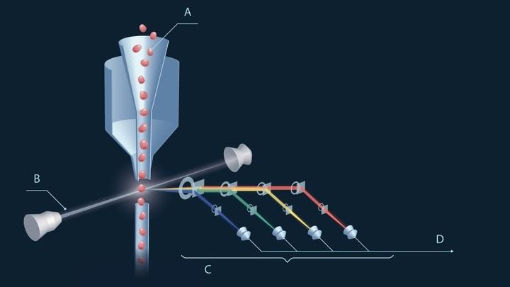 Метод фотоакустической проточной цитометрии. Лазер возбуждает краситель в клетках крови и, далее, этот краситель сам начинает испускать свет, который детектируют и расшифровывают.