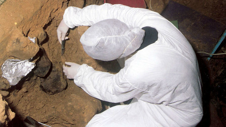 Работы по поиску ДНК в грунте проводились в семи пещерах в Бельгии, Хорватии, Франции, Испании и России.