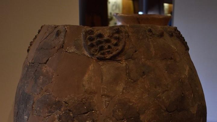 Керамические сосуды сохранили явные химические следы вина, которое изготовили около 8000 лет назад.