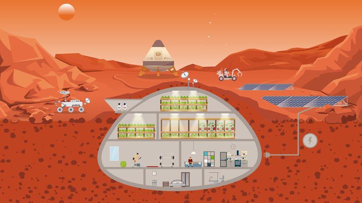 Созданию полноценных марсианских плантаций мешают нехватка света, суровый климат и вредоносное излучение.