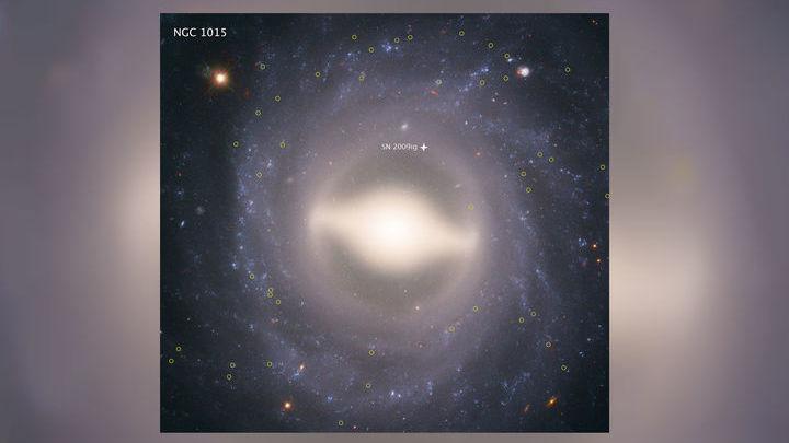 Галактика NGC 1015. 118 миллионов световых лет от Земли. Жёлтыми кружками обозначены цефеиды, звёздочкой √ сверхновая.
