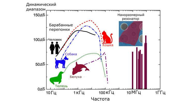 По динамическому диапазону новый наноразмерный резонатор не уступает человеческому уху.