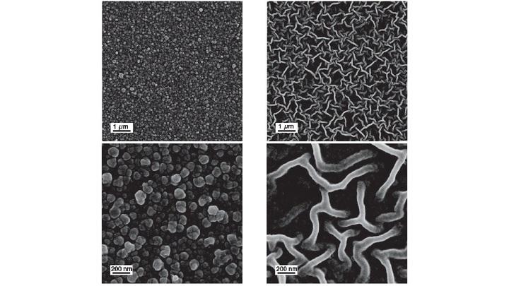 Электронные микрофотографии полученных структур Тюринга.