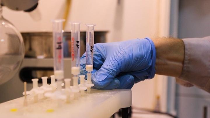 Созданный сорбент позволил определять полный набор органических кислот и неорганических анионов, присутствующих в соках, всего за один анализ и без привлечения других методов.