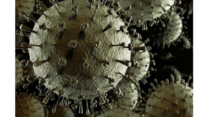 """Вирус гриппа похож на сферу, покрытую белковыми """"шипами"""". Их структура и оказалась ключом к созданию новой вакцины."""
