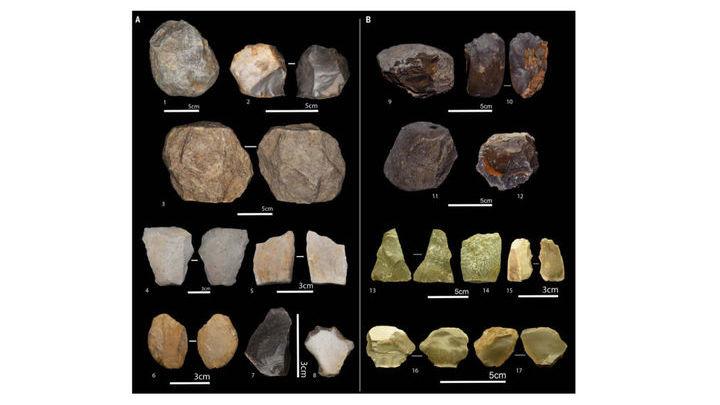 Некоторые инструменты олдувайской культуры, найденные на месте раскопок.