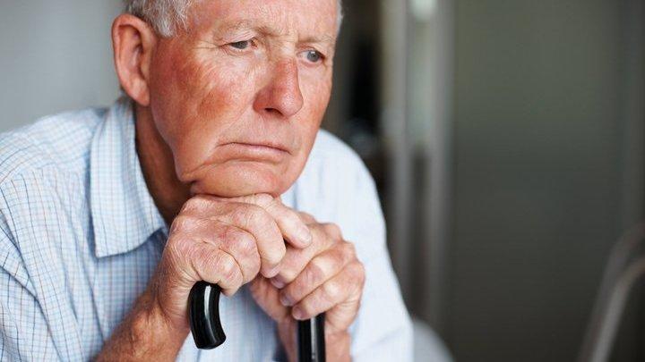 Сразу несколько соединений увеличили продолжительность жизни нематод более чем на 15%.
