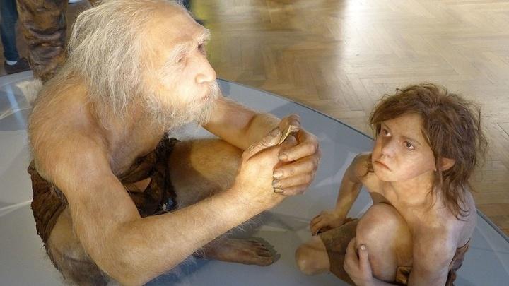 Пожилой неандерталец с ребёнком. Реконструкция в Национальном музее естествознания Австрии