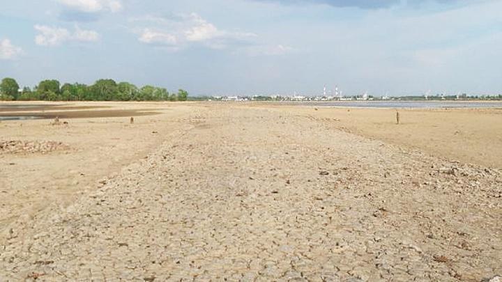 Волга обмелела до булыжной мостовой в районе Казани