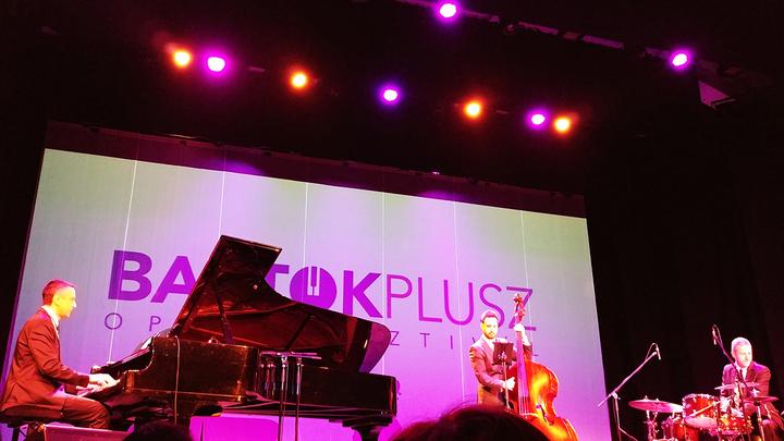 Концерт Peter Sarik Trio / фото предоставлено оргкомитетом фестиваля