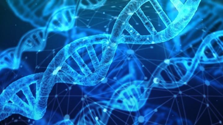 ДНК раскрыла тайны истории нашего вида.