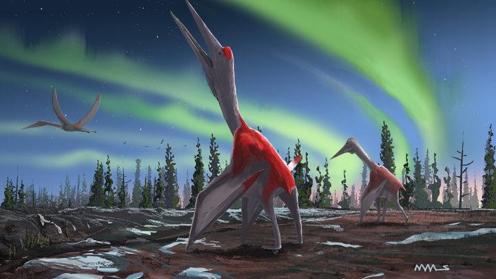 Художественное представление древней особи вида Cryodrakon boreas.