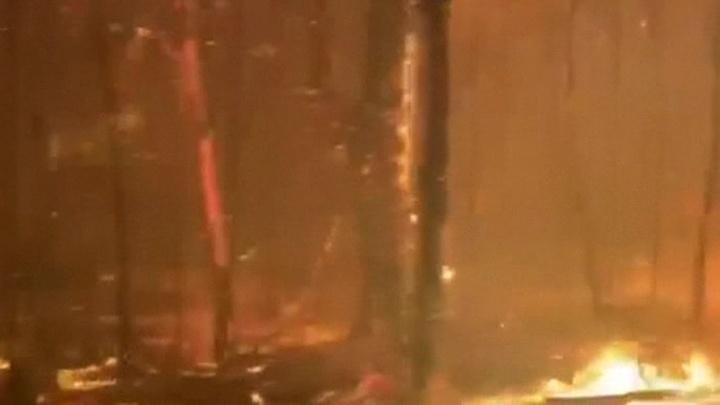 В Австралии свирепствуют лесные пожары, есть жертвы photo