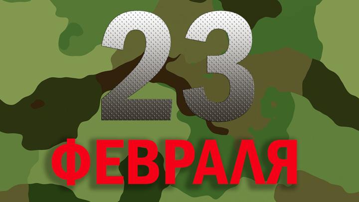 Россияне отмечают 23 февраля патриотическими акциями и спортом