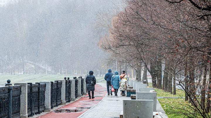 В Москве и Петербурге выпал первый снег