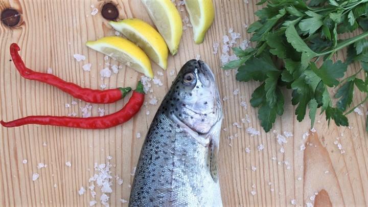 Рыба намного более питательна в конце лета и осенью из-за повышенной метаболической активности.