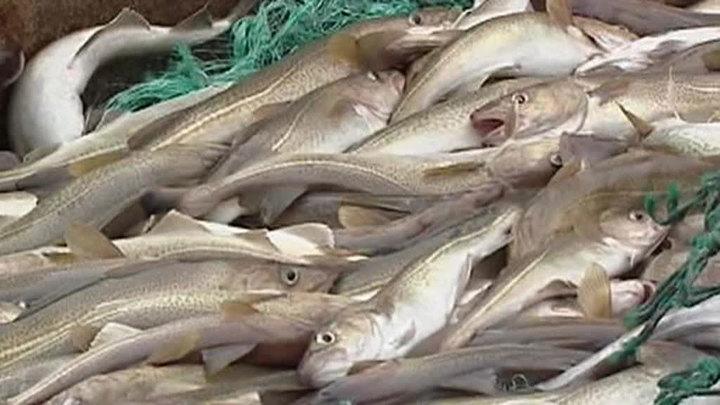 Бурятских полицейских осудили за присвоение чужого улова