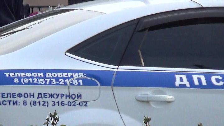 Подозреваемого в нападении на отца и сына в Петербурге задержали в Карелии