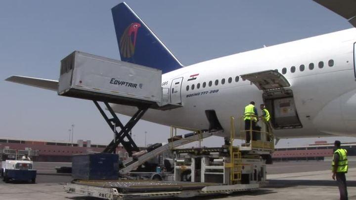 Самолет из Каира в Москву подал сигнал тревоги