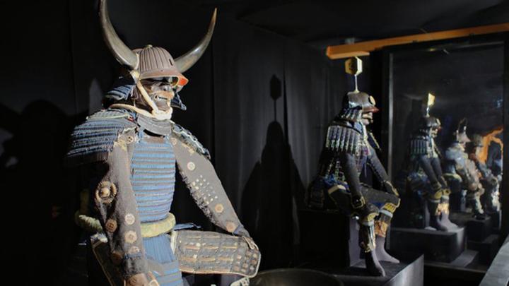 Старинные самурайские мечи представлены на выставке в Петербурге