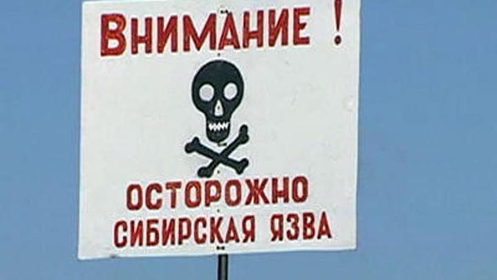 Житель Дагестана госпитализирован с подозрением на сибирскую язву