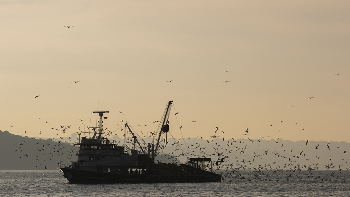 Строительство канала Стамбул в обход пролива Босфор запланировано на конец июня