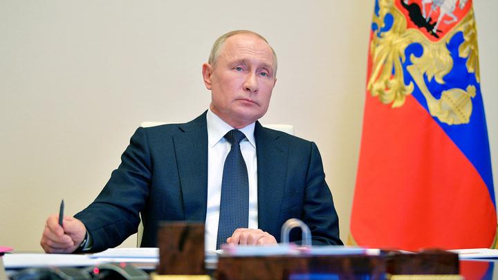 Путин поручил проверить, как соблюдаются законы о животных