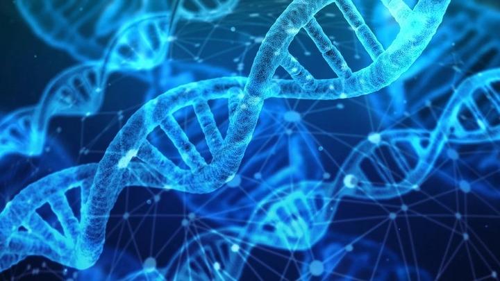 В России благодаря базе данных ДНК раскрыли 30 тыс. преступлений с 2009 года
