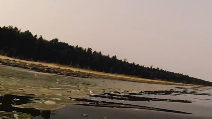 Озеро Байкал зарастает водорослями