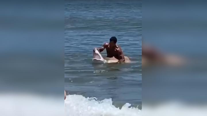Борьба купальщика с попавшей на крючок акулой попала на видео