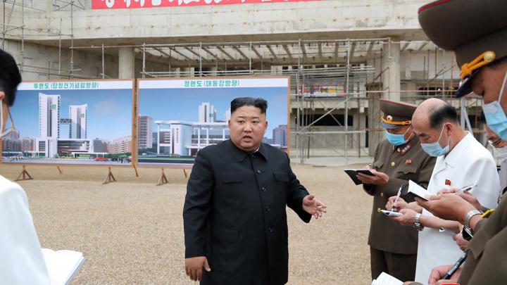 В Северной Корее показали мультфильм о вреде лишнего веса