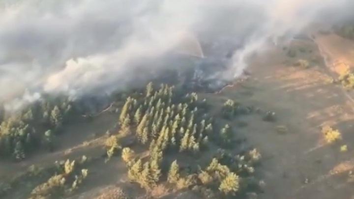 На юге страны продолжают разгораться природные пожары