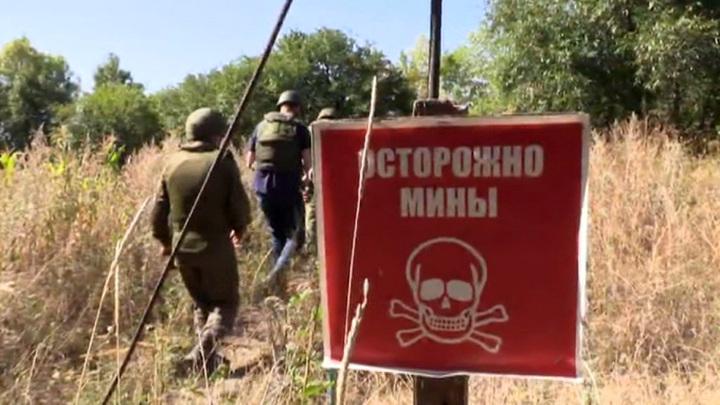 После провала спецслужб Украина не пустила инспекцию ОБСЕ в поселок Шумы