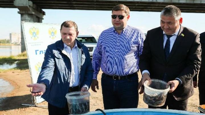 Власти Улан-Удэ выпустили в Селенгу 667 мальков байкальского осетра