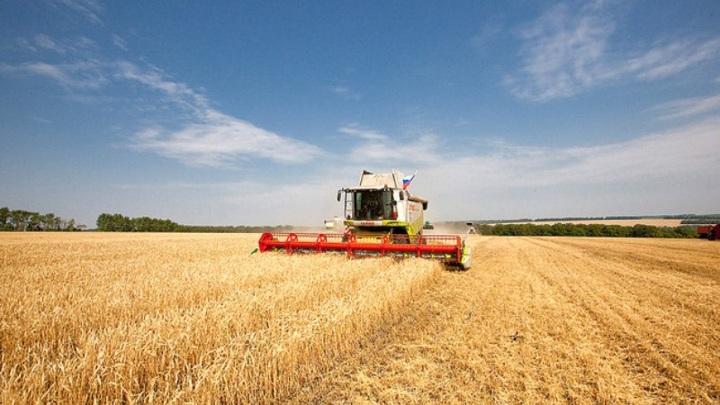 Катар подпишет на ПМЭФ-2021 соглашения на поставку зерна и мяса из России