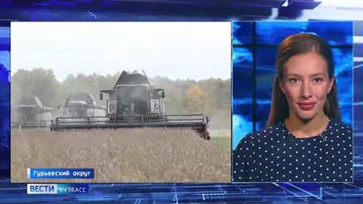 Кузбасские аграрии ставят рекорды