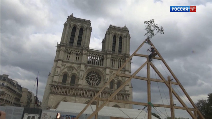 В Соборе Парижской Богоматери продолжаются реставрационные работы