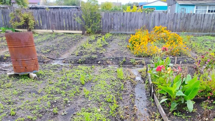 В Благовещенске до сих пор остаются подтопленными несколько огородов