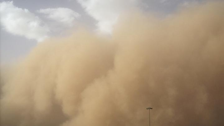 Песчаная буря из Калмыкии и Казахстана пришла в Ростов