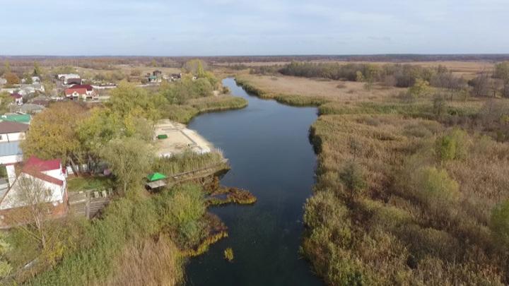 Река Битюг в Воронежской области достигла самого низкого уровня за 100 лет