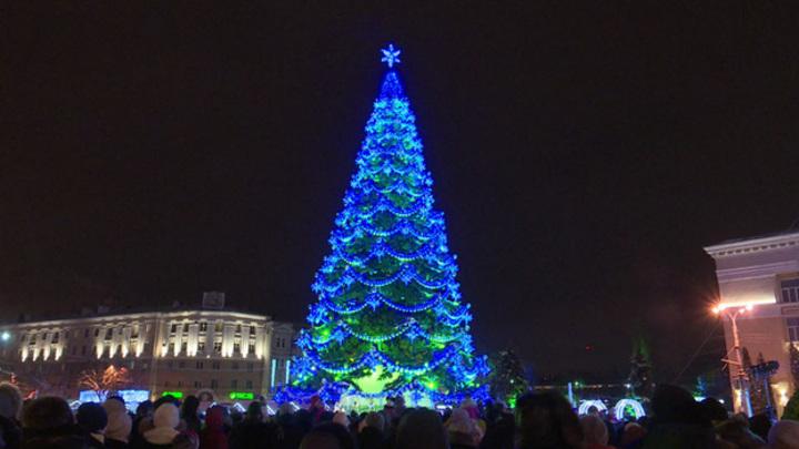 В Воронеже отказались от главной новогодней ёлки за 1 копейку
