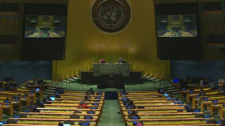 Россия внесла в ООН первый проект конвенции по борьбе с киберпреступностью