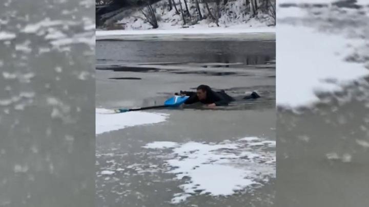 Спасение парня и собаки из реки в Твери попало на видео