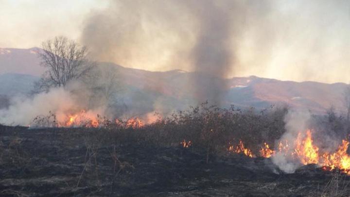 В Северной Осетии горит заповедник