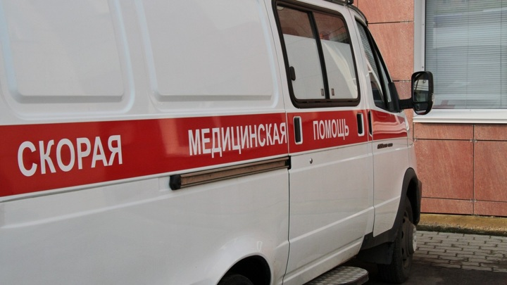 При падении дерева из-за сильного ветра в Москве пострадал человек
