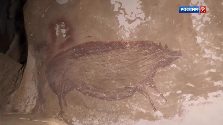 На острове Сулавеси обнаружен самый древний наскальный рисунок